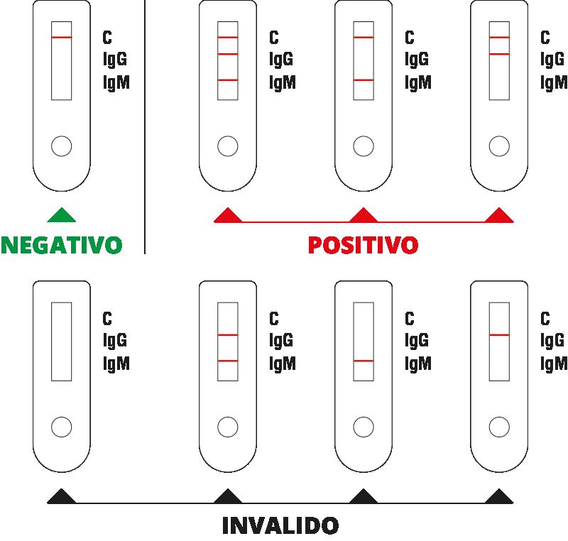 Vendita test rapido Covid-19 - DIATHEVA - Come leggere i risultati del test